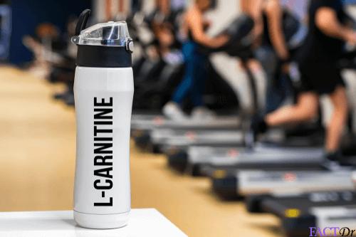 Sports Nutrition — Carnitine